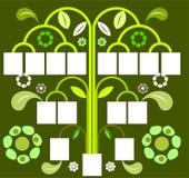 Stamboom Stock Afbeeldingen