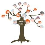 Stamboom - grappig beeldverhaal Stock Afbeelding