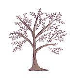 Stamboommalplaatje op witte achtergrond wordt geïsoleerd die Het hand getrokken embleem van het boomsilhouet royalty-vrije illustratie