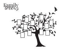 Stamboomvector met Omlijsting, Muuroverdrukplaatjes, Muurdecor, Vliegend Vogelssilhouet op een boom stock illustratie