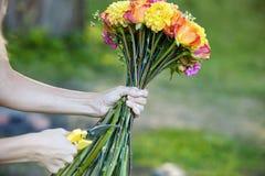 Stammar för bitande blommor för blomsterhandlare, closeup av kvinnlign Arkivfoto