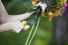Stammar för bitande blommor för blomsterhandlare, closeup av kvinnlign Royaltyfri Foto