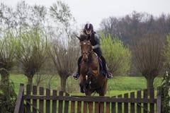 Stammar och hopp för träd för banhoppning för konkurrens för argt land för häst tonårs- över trummor av vatten och färgade stänge Arkivfoton