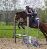 Stammar och hopp för träd för banhoppning för konkurrens för argt land för häst tonårs- över trummor av vatten och färgade stänge Royaltyfri Fotografi