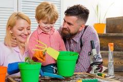 STAMMausgangstraining Öko-klasse mit einem Kind Ein kleiner blonder Junge, der Kräuter mit ihren Eltern pflanzt Glückliche Famili lizenzfreies stockfoto