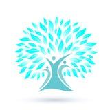 Stammbaum-Logo mit Blau verlässt auf weißem Hintergrund Stockbilder