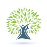 Stammbaum-Logo mit Grün verlässt auf weißem Hintergrund Stockbild