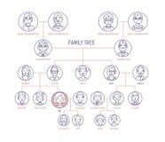 Stammbaum, Stammbaum oder Geschlechtsdiagrammschablone mit Männern s und Porträts der Frauen s in den runden Rahmen Darstellung v lizenzfreie abbildung