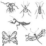 Stammen dieren Stock Illustratie