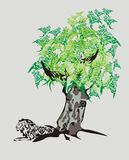Stammenleeuw en draakboom Royalty-vrije Stock Afbeelding