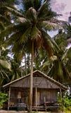 Stammes- Hütte Stockbild