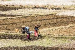 Stammes- Leute auf den Feldern Lizenzfreie Stockfotos