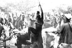 Stammes- Mann Stockbild
