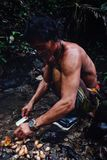 Stammes- Mitglieds-Aman-Reinigungsmaden von einem Sagobaum mitten in stockbilder