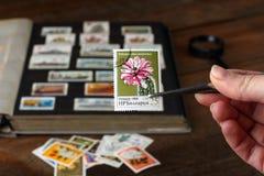 Stamp album royalty free stock photos