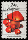 Stamp from Australia shows image of a cinnamon webcap Stock Photo