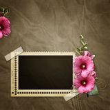 Stamp frame with mallow Stock Photo