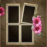 Stamp frames with mallow Stock Photos