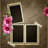 Stamp frames with mallow Stock Images