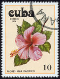 Stamp, macro Stock Photography