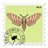 Stamp with moth Royalty Free Stock Image