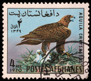Stamp printed in the Afghanistan shows Golden Eagle Stock Images