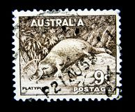 A stamp printed in Australia shows an image of platypus Ornithorhynchus anatinus on value at 9d. royalty free stock photography