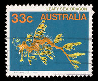 Stamp printed in the Australia shows Leafy Seadragon, Phycodurus Eques, Marine Fish Royalty Free Stock Photos