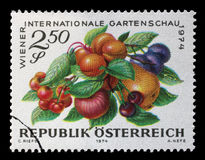 Stamp printed in Austria, devoted to the International Garden Show, Vienna Stock Photos