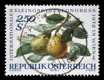 Stamp printed in Austria, devoted to the International Garden Show, Vienna, Royalty Free Stock Image