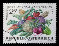 Stamp printed in Austria, devoted to the International Garden Show, Vienna Royalty Free Stock Photo