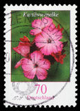 Stamp printed in the Federal Republic of Germany shows Dianthus carthusianorum. Series, circa 2006 Stock Photos