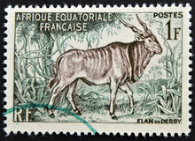 A stamp printed in French Equatorial Africa shows. FRANCE - CIRCA 1957: A stamp printed in French Equatorial Africa shows Giant eland Royalty Free Stock Photography