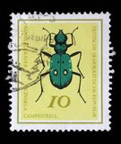 Stamp printed in Germany from the Useful Beetles issue shows Green Tiger beetle Royalty Free Stock Photo