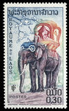 Stamp printed in Laos shows the elephant Stock Photography