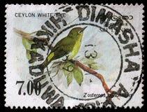 Stamp printed in the Republic of Sri Lanka shows the Sri Lanka white-eye bird Royalty Free Stock Image