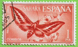 Stamp Spanish Sahara Stock Images