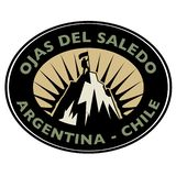 Stamp with text Ojas Del Saledo, Argentina - Chile royalty free illustration