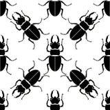 Stampa animale - un modello dallo scarabeo Gli insetti sono neri su un fondo bianco Immagine Stock Libera da Diritti