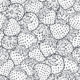 Stampa in bianco e nero di struttura delle fragole di vettore illustrazione di stock