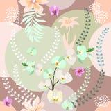 Stampa botanica con la tavolozza di colori pastelli Fotografia Stock Libera da Diritti