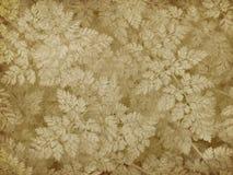 Stampa del lichene dell'annata Fotografie Stock