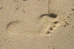 Stampa del piede Immagini Stock