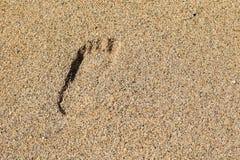 Stampa del piede sulla spiaggia Fotografia Stock Libera da Diritti