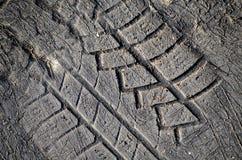 Stampa dell'impronta del pneumatico in asfalto Fotografia Stock Libera da Diritti