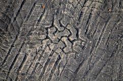 Stampa dell'impronta del pneumatico in asfalto Fotografie Stock