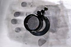 Stampa della palma Fotografia Stock Libera da Diritti