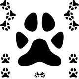 Stampa della zampa del cane Immagini Stock
