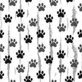 Stampa della zampa senza cuciture Tracce di Cat Textile Pattern Modello senza cuciture di orma del gatto Vettore senza giunte Fotografia Stock