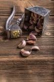 Stampa di aglio Fotografia Stock